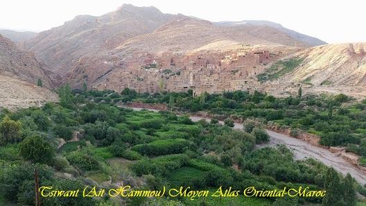 Tsiwant ait hammou moyen atlas oriental maroc 2